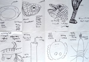 Kids drawings of parts of animals at Children's Art School workshop led by Julia Millette