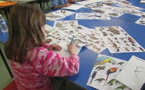Kids drawing animal parts at Children's Art School course led by Julia Millette